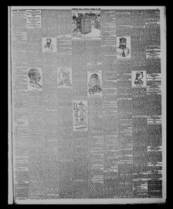 THE I SWANSEA MURDER ¡ • I|1889-03-19|The Western Mail - Papurau