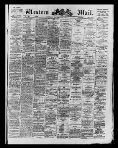 Advertising 1873-12-11 The Western Mail - Papurau Newydd