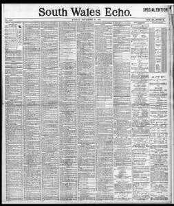 Advertising 1895-11-29 South Wales Echo - Papurau Newydd